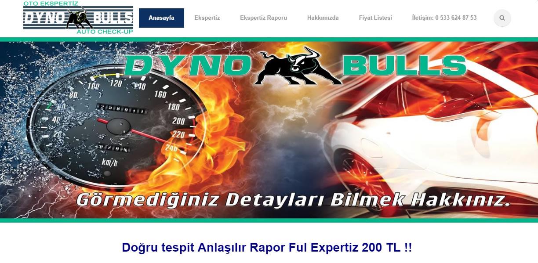 Dyno Bulls Oto Eksperiz