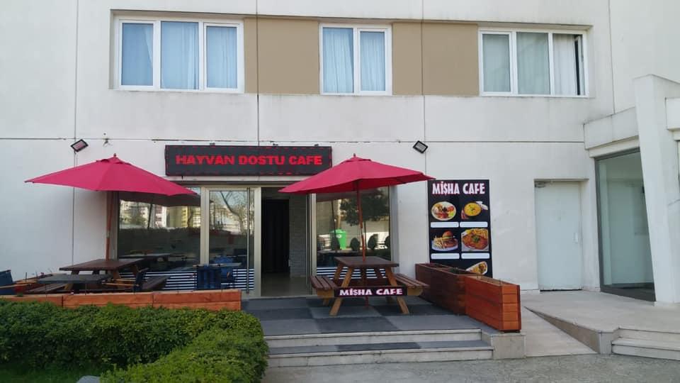 Hayvan Dostu Cafe